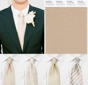 d6076dab4e59 Ktoré kravaty sú vhodné pre váš veľký deň